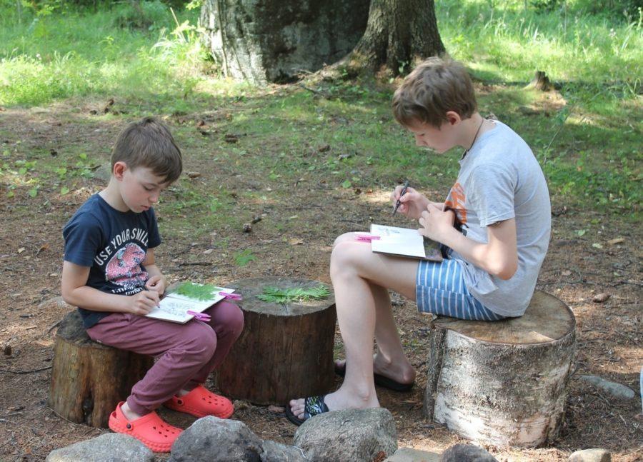 языковой лагерь в финляндии для детей 10-16 лет миккели
