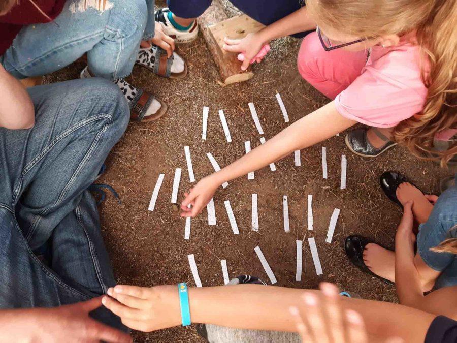 Языковая смена на летних каникулах Technohistory в Миккели